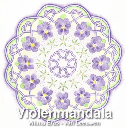 Violen mandala